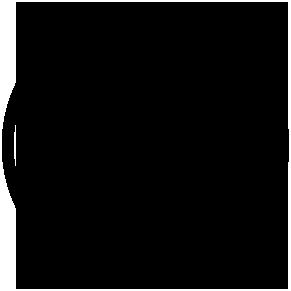 Zed Insurance Logo Icon